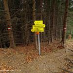 ....an der Wegkreuzung gehe ich nun rechts weiter, immer dem Weg 61 folgend.....