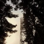 ...und was für eine Überraschung ich stand, ungeplant, oben auf der Wildwiese, vor der Aussichtswarte.....