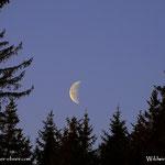 ....der Mond verbschiedet sich schön langsam, zur Zeit bei 42% im Abnehmemodus.....