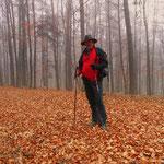 Wandern im Vulkanland, Wege mit fast keinen Markierungen