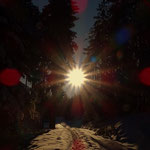 ....am Weg nach Hause die Sonne noch einmal eingefangen....