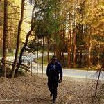 """....über das """"Poschn"""" hinunter zum """"Kraxenbach"""", hier führt ein Weg nun quer durch den Wald..."""