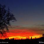 21.01.2021 - Tagesanbruch, die Morgendämmerung immer wieder ein imposantes Schauspiel...