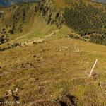 .....der steile Abstieg vom Moarkogel, hinunter zum Moartörl und weiter auf die Moaralm....