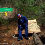 ...ein kurzer Stop beim Waldbaden, nur kurz, da es heute doch sehr frisch war, um das richtig zu genießen