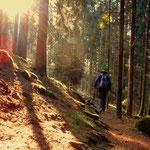 ...der Weg zum Lüsswaldsattel...