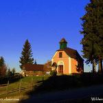 ....Waldhauserkapelle, best place ever, die Wildwiese.....