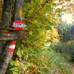 nun der Abstieg ins Lafnitztal, nach Mönichwald