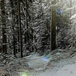 08.02.2021 - Der Winter ist zurück und bis zum Mittwoch kommt auch noch die Kälte.