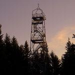 ...der Aussichtsturm auf der Wildwiese....