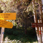 ....wieder im Lasitzengraben angelangt, hier wanderte ich am Morgen rechts hinauf zur Lasitzen Jagdhütte und weiter zur Teichenegg Alm....