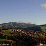 ...bevor es in den Wald hineingeht ein Blick zurück, Birkfeld und am Horizont die Wildwiese...