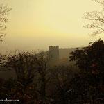 ...im Abstieg nach Wolfsthal ein Blick zur Ruine Pottenburg.