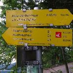 """Er beginnt wirklich unspektakulär, der Steirische Voralpenweg """"740"""", hier am Pfaffensattel, sehr schade."""