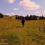 ....über die Feldwiesalm, am Weg hinunter nach Maierhöfen...