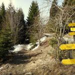 jetzt geht es den Mariazellerweg 06 wieder zurück zur Talstation der Seilbahn