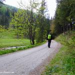 ....es geht entlang des Mixnitzbachs....