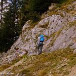 ....immer weiter hinauf bis oberhalb des Berggasthof Steinerhaus.....