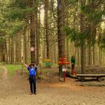 angekommen am Lüsswaldsattel