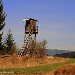 """Am Weg zum """"Sommersguter Hochmoor"""" geht es vorbei an Hochständen...."""