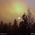 ....Sunrise, ein wenig benebelt und exakt um 5 Minuten zu spät, wieder getrödelt, oder was auch immer.....