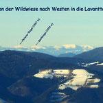 Ein Blick von der Wildwiese zum Peterer Riegel & Speikkogel (ein älteres Bild)