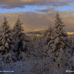 ...wirklich perfekt so ein Wintertag....
