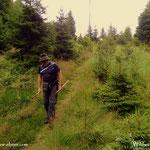 31.07.2021 - heute meine 50. Wanderung auf die Wildwiese abgeschlossen, schön langsam wird es doch noch was.