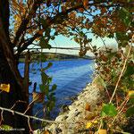 ...an der Neuen Donau angekommen, jetzt geht es entlang der Neuen Donau bis zur Steinspornbrücke....
