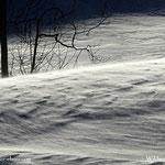 ...ein Winterspektakel, Wind - Schnee - Sonne - und kalt, ein richtiger Wintertag...