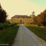 ...Schloss Eckartsau, Pause, Stempel, einmal weg vom Damm....