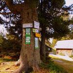 ....hier führt der Weg zum Gipfel des Stoderzinken und zum Friedenskircherl....
