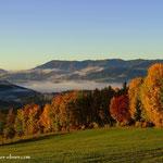 ...der Herbst, ein Augenschmaus diese Farbexplosion....