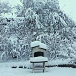 10.12.2020 - Heute bereits der zweite Tag mit der Schneeschaufel in der Hand, nicht so viel Schnee als in Kärnten oder Osttirol, aber immerhin.....