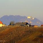 Nach der Überquerung des Pleschbaches, geht es hinauf auf den Schemming, ein Blick zurück, nach Kapfenstein