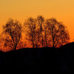 25.11.2020 - Morgendämmerung im Joglland.....