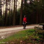 "....entlang am ""Gmoaweg"", hier im Bereich Lochsteinweg..."