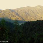 ein Blick in die Tiefe, Wald am Schoberpass