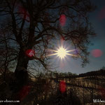 """...die Sonne war dann schon sehr """"strahlend"""" als wir Strallegg wieder verließen...."""