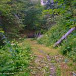 """....ein schöner, ausgemähter Wanderweg, """"Chapeau""""....."""