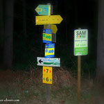 ...hier folge ich dem Weg 6, welcher hier links abzweigt.