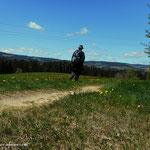 ...nach der Tischlerei Hofer geht es über einen schönen Feldweg....