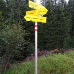 .....nach einer kurzen Forststraßenwanderung geht es nun hinauf zum Bärensuhlsattel....