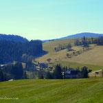 ....oberhalb vom Gesselbauer, mit Blick in Richtung Sagbauer, führt mich der Weg nach Waldbach...