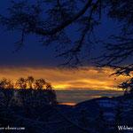 24.01.2021 - Morgendämmerung, erwischt beim Schneeschaufeln an diesem Sonntagmorgen....