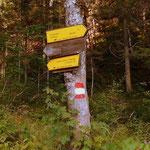 ....wir queren einige Male die Panoramastrasse, folgen jedoch grundsätzlich dem Weg Nr. 679.....