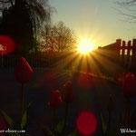 09.05.2021 - Sonnenaufgang am Muttertag.....