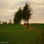 """....über die Felder """"am Rain"""" geht es hinüber zum Kroisleitner...."""
