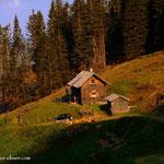 ...Bärntalhütte, eine kurze Pause, ein leckeres Käsebrot wurde gespeist....