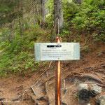 ....eine Umleitung wurde errichtet, da ein Lawine den Weg Richtung Schalleralm zerstört hat....